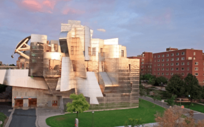 The 35 Best College Art Museums